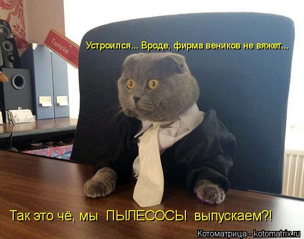 kotomatritsa_A