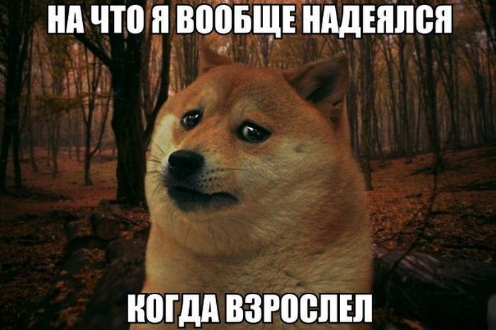 podborka_18