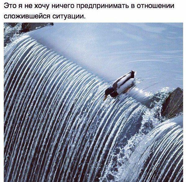 podborka_43