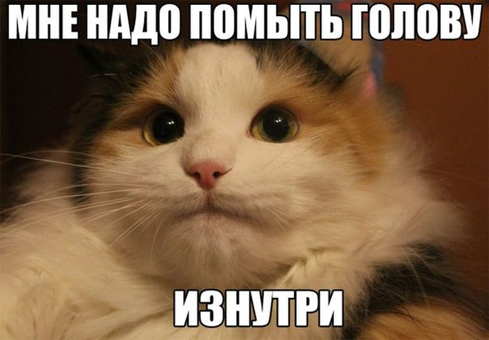 podborka_45