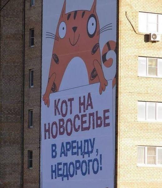 prikolnie_obiyavkeniya_23