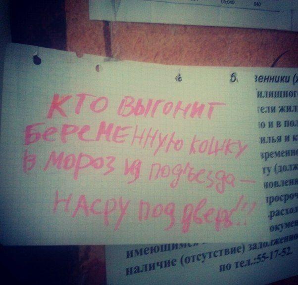 prikolnie_obiyavkeniya_32