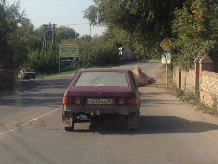 russia_different_27