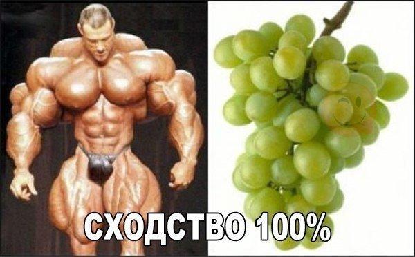 1456000393_1455963111_raznoobraznaya_1-8