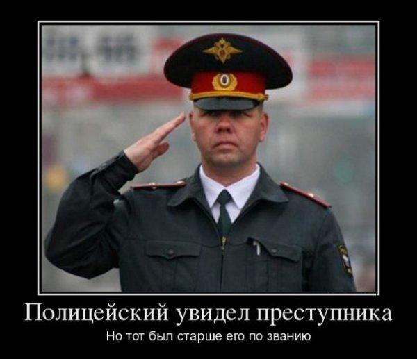 1456000409_1455963068_raznoobraznaya_1-13