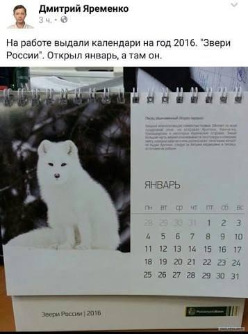 1456000443_1455963120_raznoobraznaya_1-53
