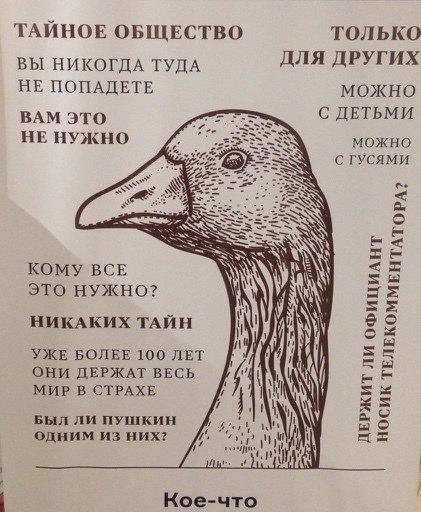 1456000452_1455963079_raznoobraznaya_1-41