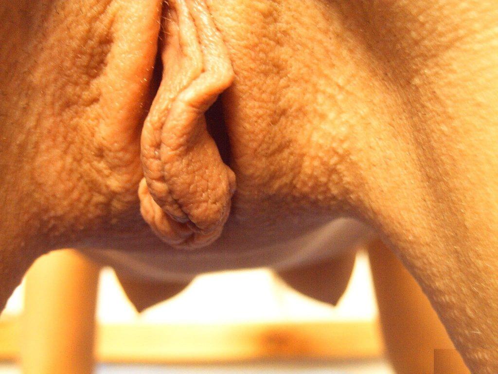 порно фото мужиков крупным планом