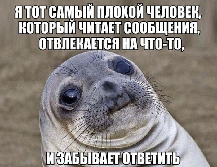 podborka_dnevnya_39