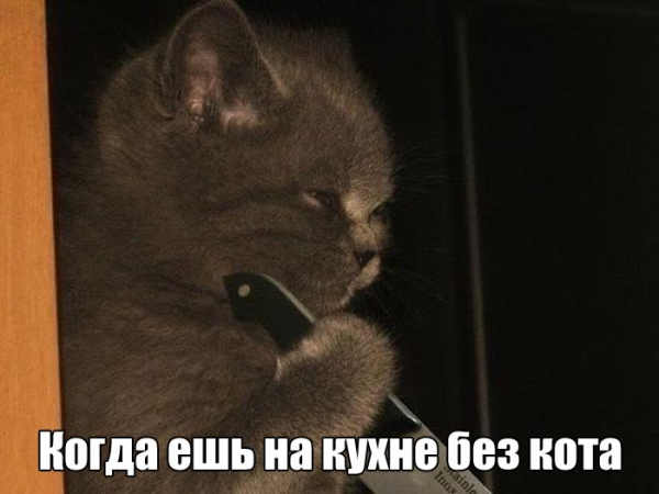 1470785507_podborka_vecher_01