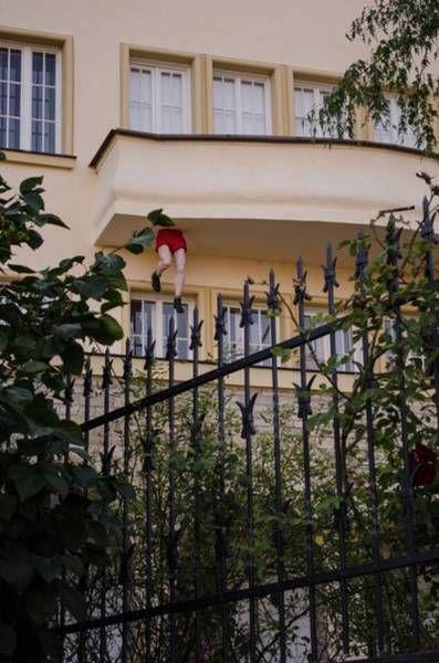 podborka_dnevnaya_08